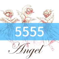 angel-number5555