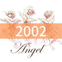 angel-number2002
