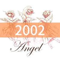 angel-number2002