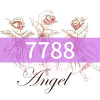 angel-number7788