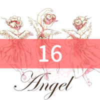 angel-number16