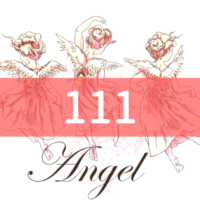angel-number111
