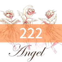 angel-number222