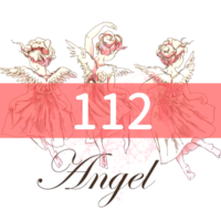 angel-number112