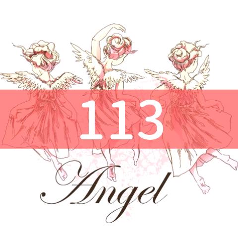 angel-number113