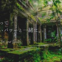 kenkou-powerstone